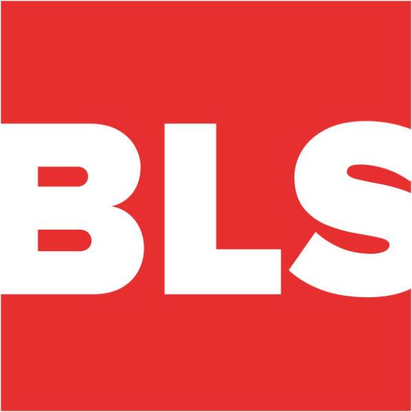 BIBLE FOR LIFE SEMINAR (BLS)